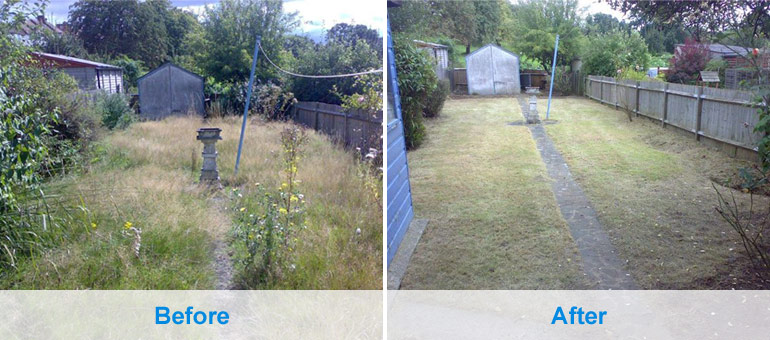 Building maintenance gardening services london for Affordable garden services